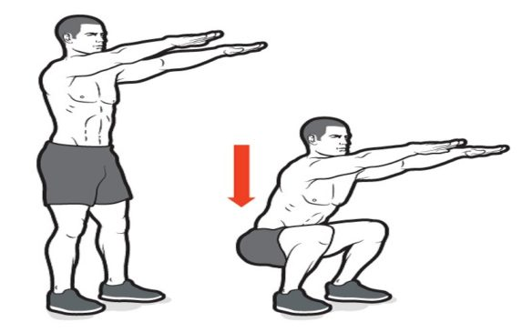 body weight squat illistration