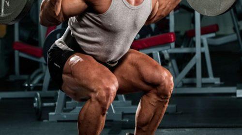 leg-exercises-back-squat_0