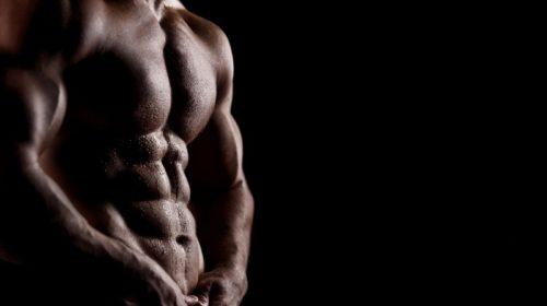 Bodybuilding-Nicely-Defined-Male-Body-1440x900-wide-wallpapers.net