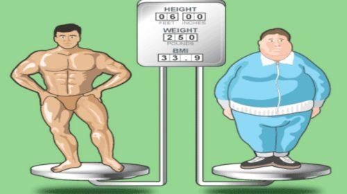 body-composition-e1494888660295